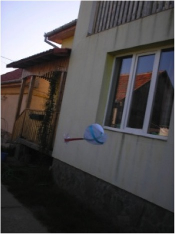 Project_Valea_Lui_Mihai_image052