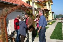 Project_Valea_Lui_Mihai_image029